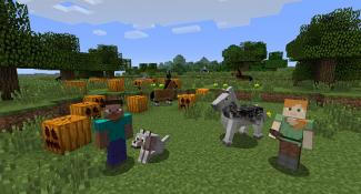 Minecraft On Wii U Updated With Free DLC Content